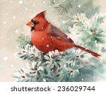 Winter Cardinal Bird Hand...