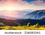 majestic panorama of green... | Shutterstock . vector #236081041