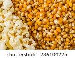 pile of popcorn and ripe corn... | Shutterstock . vector #236104225