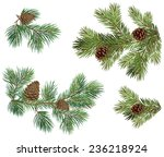 vector collection of christmas... | Shutterstock .eps vector #236218924