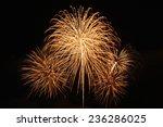 Fireworks On The Black Sky...
