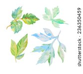 set of watercolor floral... | Shutterstock .eps vector #236350459