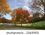 Arlington Cemetery In Autumn