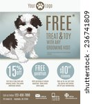 flyer template for a pet store... | Shutterstock .eps vector #236741809