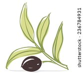 olive branch with olive leaves... | Shutterstock .eps vector #236784931