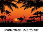 African Landscape With Animal...
