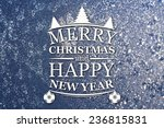 merry christmas and new year... | Shutterstock . vector #236815831