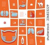 veterinary flat infographic   Shutterstock .eps vector #236823229