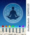 in meditation chakra spheres | Shutterstock . vector #236901115