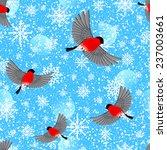 flying bullfinches. vector...   Shutterstock .eps vector #237003661
