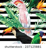 parrots exotic floral seamless...   Shutterstock .eps vector #237125881