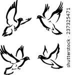 abstract dove set   Shutterstock .eps vector #237325471