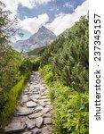 road towards the summit ... | Shutterstock . vector #237345157