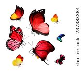 flock of butterflies | Shutterstock . vector #237388384