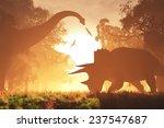 mysterious magical prehistoric... | Shutterstock . vector #237547687