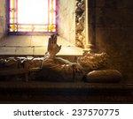 tomb of camoens  the great... | Shutterstock . vector #237570775
