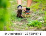 sports shoes walking or jogging ... | Shutterstock . vector #237684541