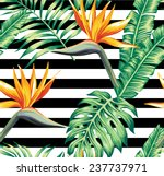 exotic tropic plants composed...