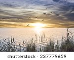 sunrise at sea from the shore... | Shutterstock . vector #237779659