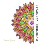 ornament beautiful  card with...   Shutterstock .eps vector #237789154