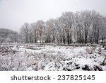 Snowfall At Gassho Zukuri...