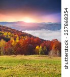 colorful autumn morning in the...   Shutterstock . vector #237868354