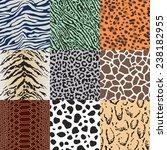 wild animal skin fabric pattern   Shutterstock .eps vector #238182955