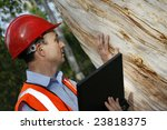 Environmental Engineer With...