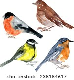 Set Of Watercolor Drawing Bird...