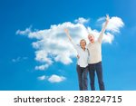 happy mature couple cheering at ... | Shutterstock . vector #238224715