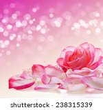 Stock photo pink rose and petals 238315339