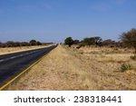 etosha | Shutterstock . vector #238318441