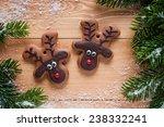 funny reindeer cookies | Shutterstock . vector #238332241