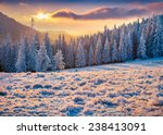 Beautiful Winter Sunrise In Th...
