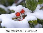 the results of the snow and ice ... | Shutterstock . vector #2384802