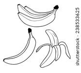 banana fruit outline vector | Shutterstock .eps vector #238533625