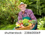 senior gardener with a basket... | Shutterstock . vector #238600069