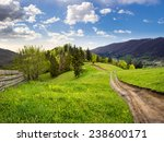 collage landscape with fence near the path through meadow up the hillside to forest  on the mountain. - stock photo