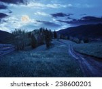 collage landscape with fence near the path through meadow up the hillside to forest  on the mountain at night in full moon light - stock photo