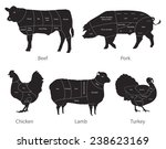 vector isolated farm animals...