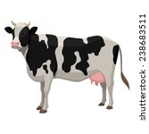 Stock vector cow 238683511
