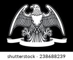 eagle heraldry with blank ribbon | Shutterstock .eps vector #238688239