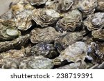 Closeup Of Oyster Shells For...
