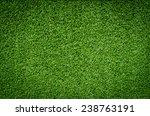green grass texture | Shutterstock . vector #238763191