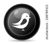 bird icon. internet button on...   Shutterstock . vector #238789321