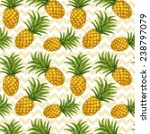 hand drawn seamless pattern... | Shutterstock .eps vector #238797079