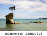 Isolated Rock With A Tree...
