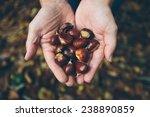 man holding handful of fresh... | Shutterstock . vector #238890859
