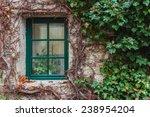 Old Wooden Window Overgrown...
