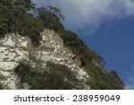mountain at cathedral cove... | Shutterstock . vector #238959049